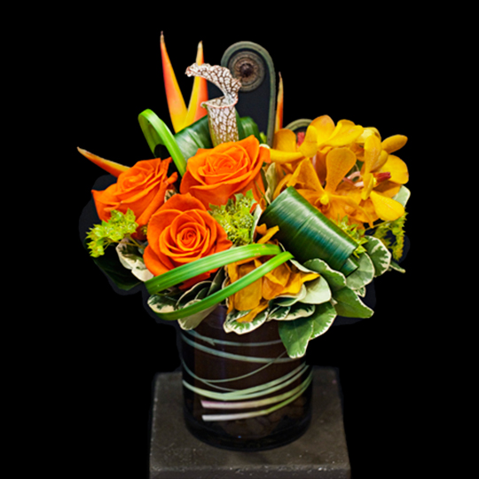 Young Flowers Seattle Modern artistic floral design Flower